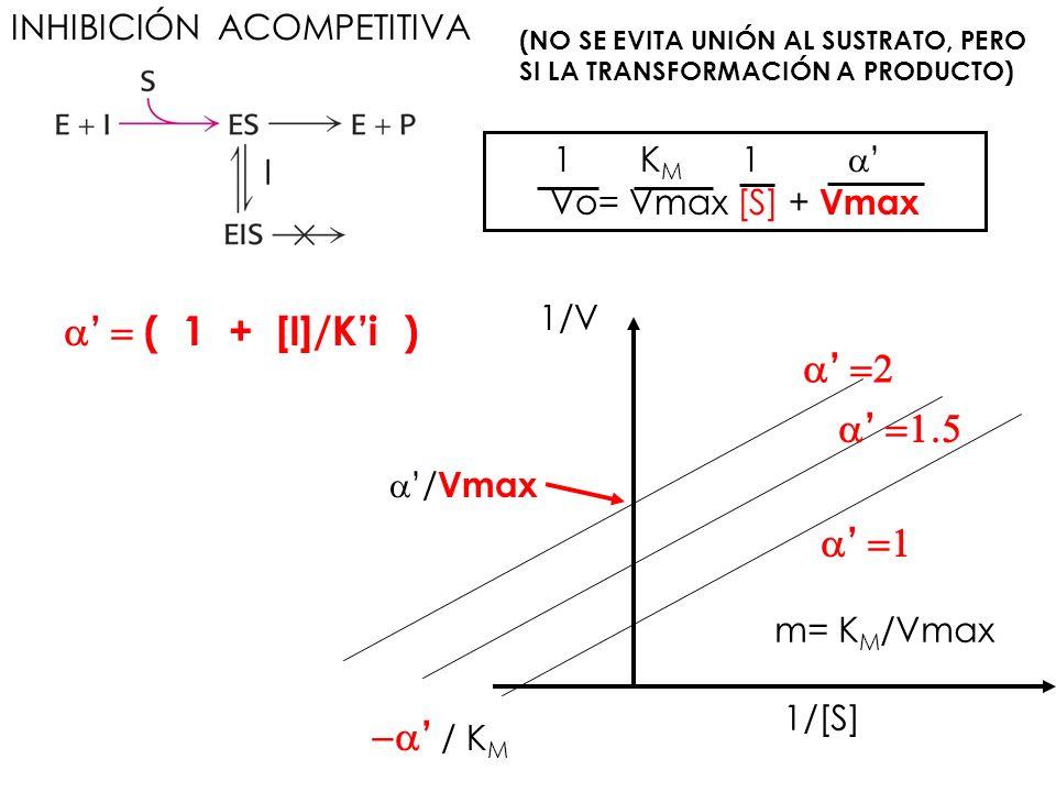 a' = ( 1 + [I]/K'i ) a' =2 a' =1.5 a' =1 -a' / KM